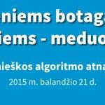 google-algoritmas-2015-m
